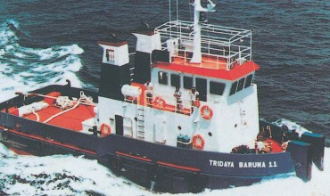 Shallow Draft Tug - 21M